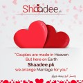 shaadee.pk online paid matrimonial services