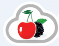 Restaurant Management System   Cloud Based POS – cherryberryrms