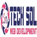 Sn Tech Sol