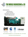 The World Engineering & Co