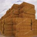 Wheat Straw/ Best Quality Long Wheat Straw