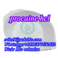 Buy procaine hcl powder,cas 51-05-8,procaine hydrochloride,procaine hcl best price